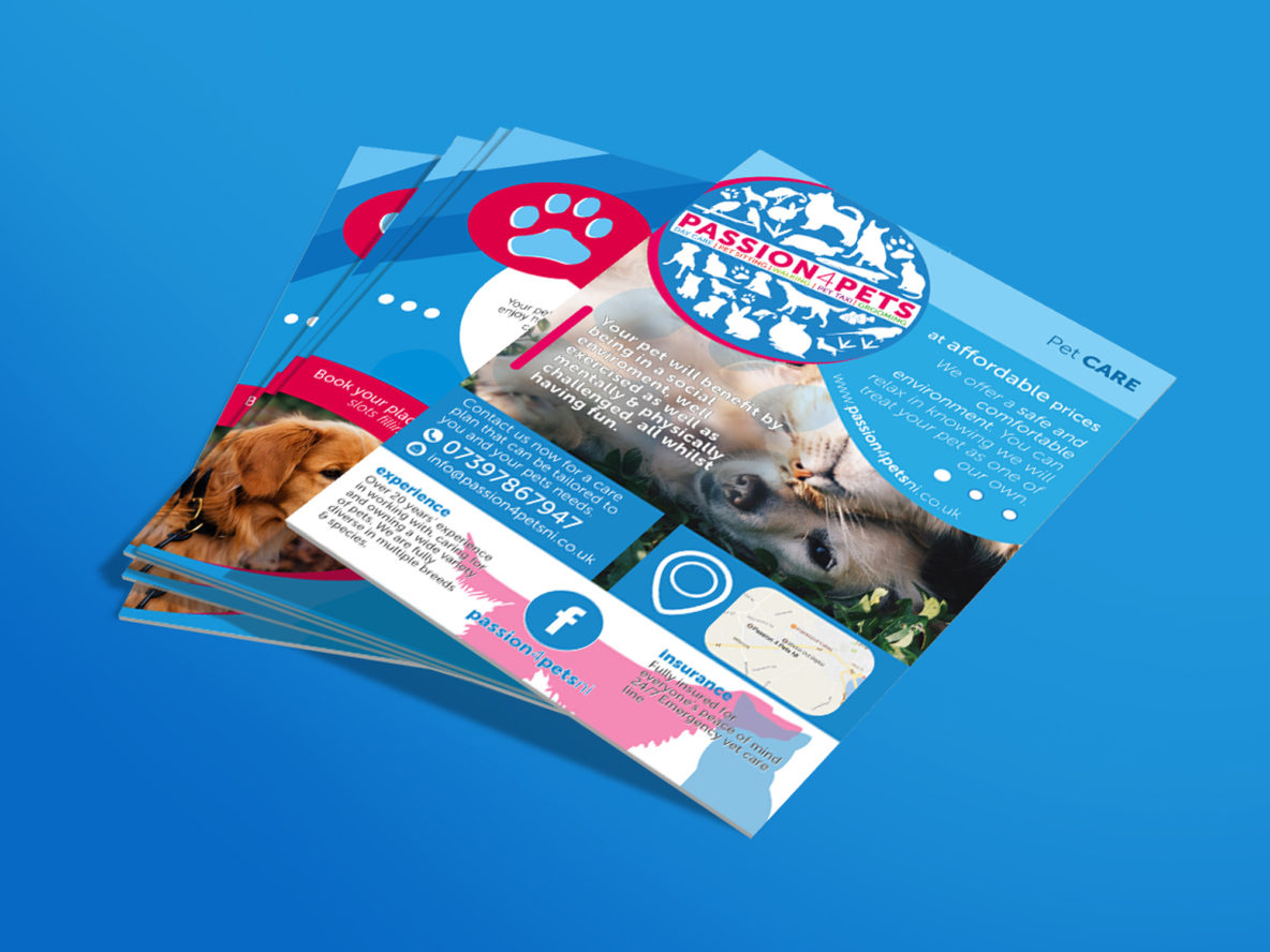 Stickin Out Creative | Graphic Design | Web Design | Videography | App Design